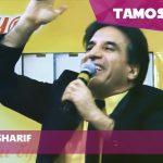 Shaheen Sharif - Lalae Daman