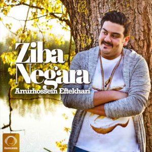 Amirhossein Eftekhari - Ziba Negara