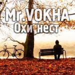 [ZePeR Pro] Mr.VOKHA - Охи нест