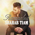 Shahab Tiam - Raazaalud