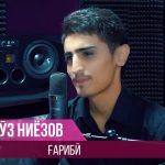 Некруз Ниёзов - Гариби