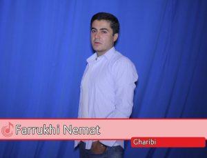 Фаррухи Немат - Гариби