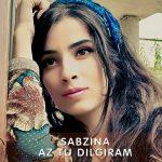 Сабзина - Аз ту дилгирам