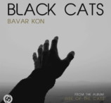 Black Cats - Bavar Kon