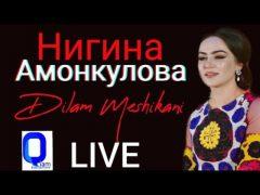 Нигина Амонкулова - Дилам мешикани