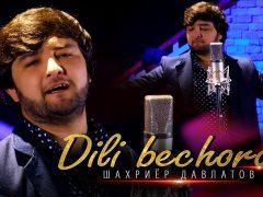Шахриёр Давлатов - Дили бечора