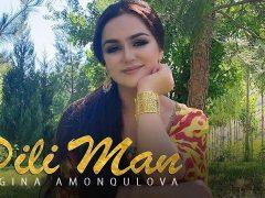 Нигина Амонкулова - Дили ман