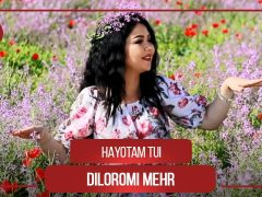 Дилороми Мехр - Хаётам туи
